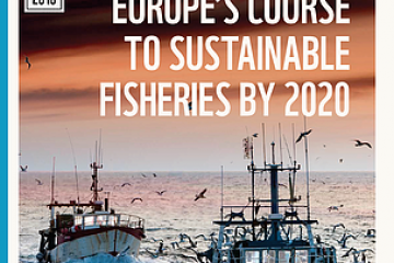 Member States falling behind on Common Fisheries Policy implementation, new WWF report finds